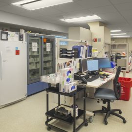South Geauga Lab Remodel